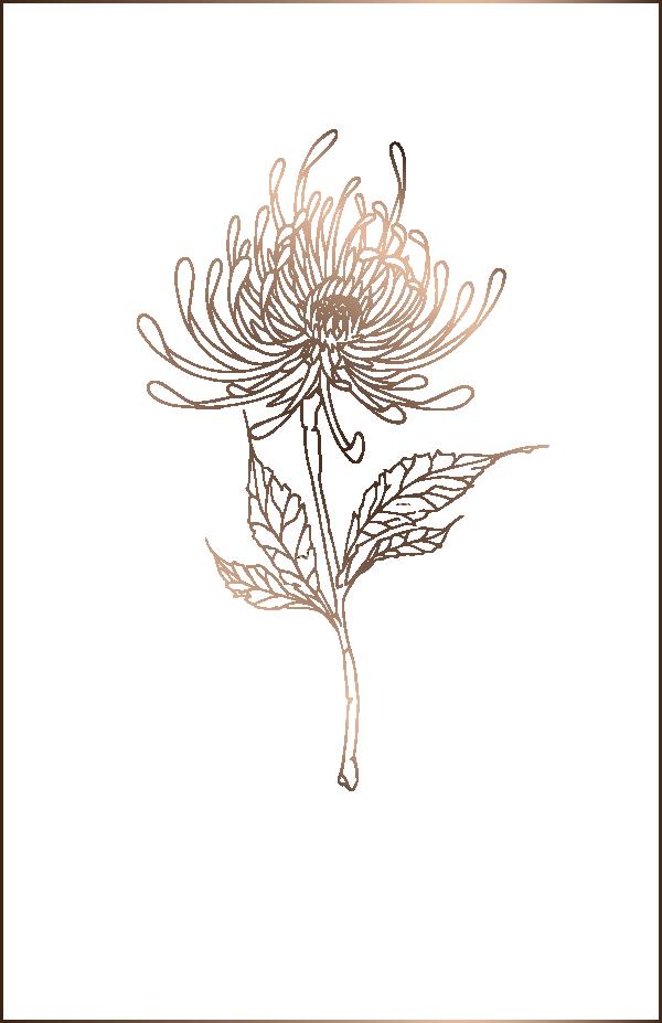 Seidenbänder für Floristik, Kerzen, Brautschmuck